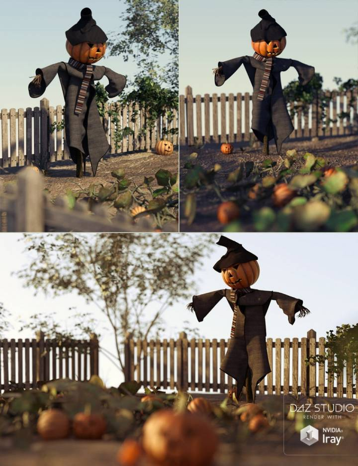 pumpkin-jacks-pumpkin-patch