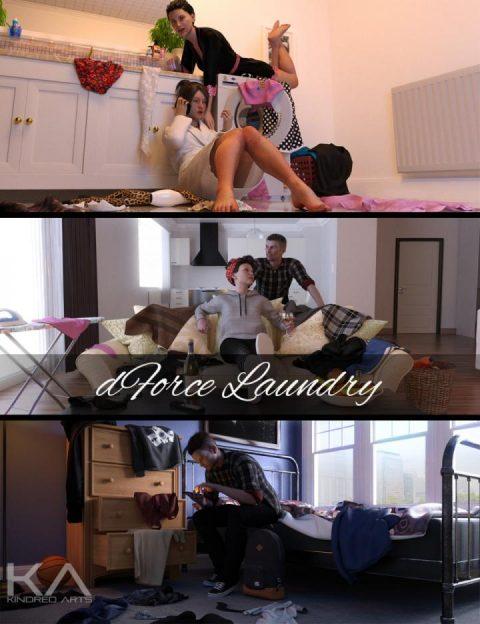 dForce Laundry